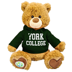 """PLUSH POLLY 10"""" RECYCLED BEAR WITH GREEN HOODIE"""