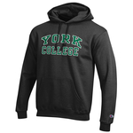 CHAMPION HOODED SWEATSHIRT WITH YORK ARCHED OVER COLLEGE IN WHITE AND GREY IMPRINT