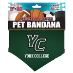 ALL STAR YORK COLLEGE DOG BANDANA