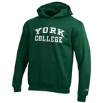 CHAMPION YOUTH YORK OVER COLLEGE HOODED SWEATSHIRT
