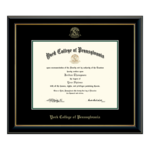CHURCH HILL CLASSICS EMBOSSED EDITION IN ONYX GOLD DIPLOMA FRAME